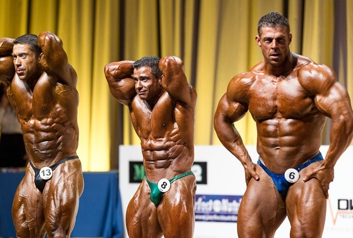 IFBB Mr. Europe Pro Results 2012